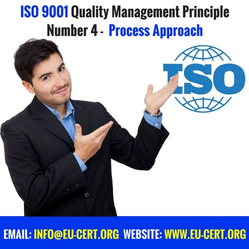 ISO 9001 Quality Management Principle Number 4 - Process Approach