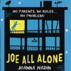 JOE ALL ALONE - ALONE