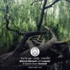 Natural Element #48 w/ Avneesh