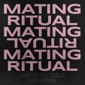 Mating Ritual Light Myself On Fire Artwork