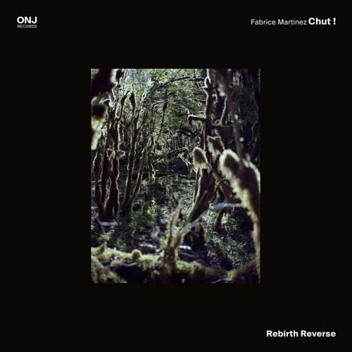 "Fabrice Martinez Chut ! ""Rebirth Reverse"""