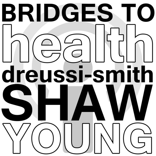 Bridges to Health and Healthcare - Dreussi-Smith, Shaw, and Young Webinar Podcast