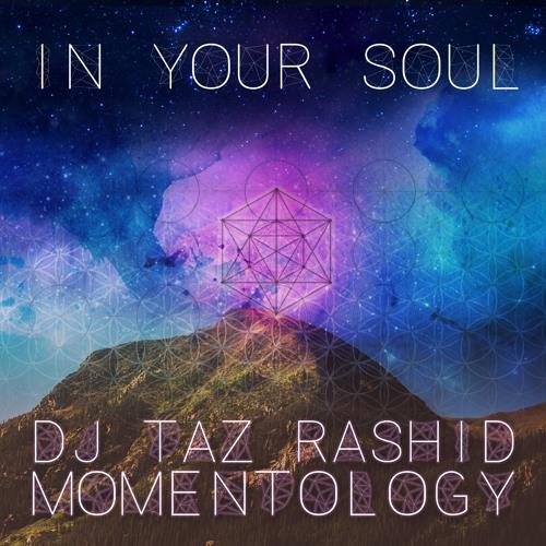 In Your Soul - DJ Taz Rashid & Momentology