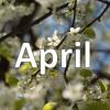 DS - April Sixth 18