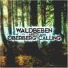 @ Waldbeben meets Oberberg Calling 11.2.17
