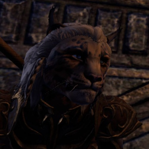 Khajiit Audition - Evidence