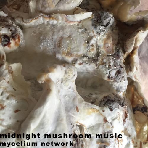 Mycelium Music
