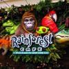 can I take you to the rainforest café