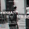 TRIBE (Blocboy JB x Drake