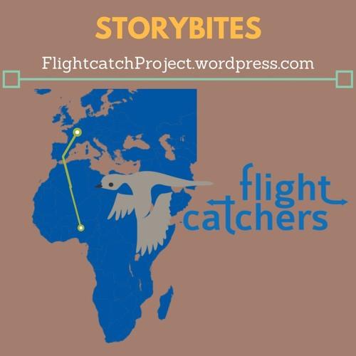 Storybites Flightcatcher Project