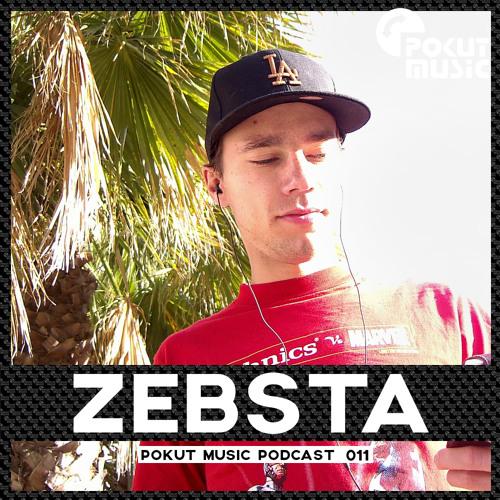 Pokut Music Podcast 011 // Zebsta