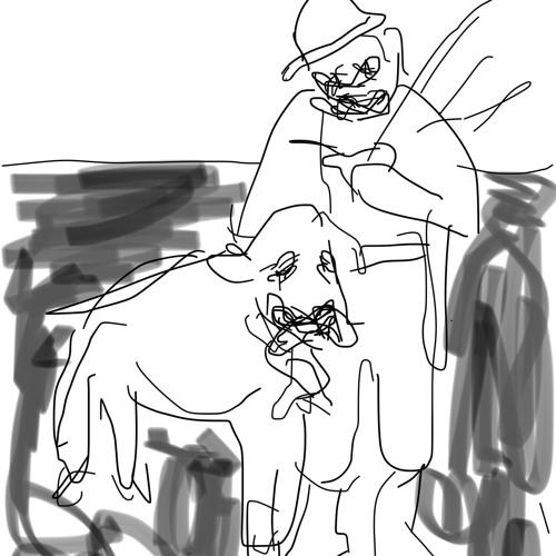 Pecora castrata con campana al collo