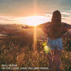 Niall Horan - On The Loose (Jamie Williams Remix)