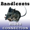 Mojo Working - Bandicoots