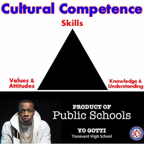 4 Cultural Competence