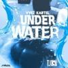 Vybz Kartel - Under Water