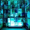 Blu (freestyle)