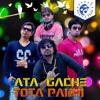 Aata Gache Tota Pakhi