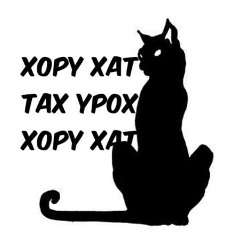 Xopy Xat