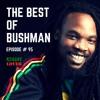 95 - Reggae Lover - Bushman