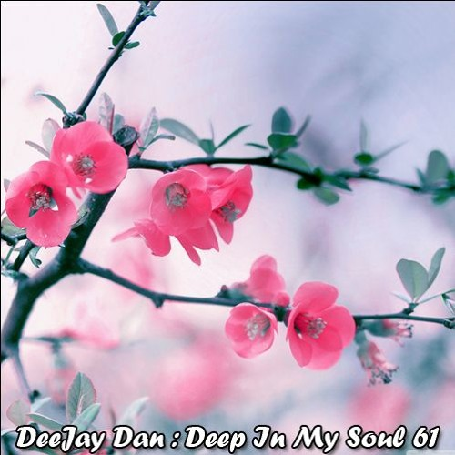 DeeJay Dan - Deep In My Soul 61 [2018]