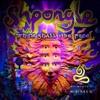 Shpongle - When Shall I Be Free (Shalohim Remix)