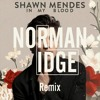 Download Shawn Mendes - In My Blood (Norman Ridge Remix) Mp3
