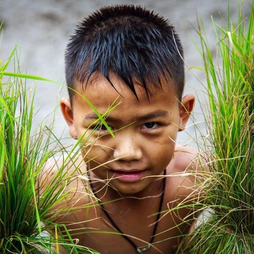 Indonesia rice subsidy program improves children's health