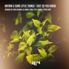 PREMIERE : Antrim & Some Little Things - Just So You Know (Ran Salman Remix)