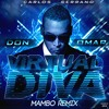 Don Omar - Virtual Diva (Carlos Serrano Mambo Remix)
