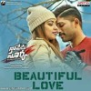 Beautiful Love - Naa Peru Surya Naa Illu India