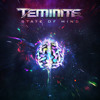 Teminite - State Of Mind