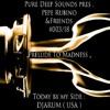 "PureDeepSounds Pres.  Pepe Rubino & DJARUM -""Prelude To Madness"""