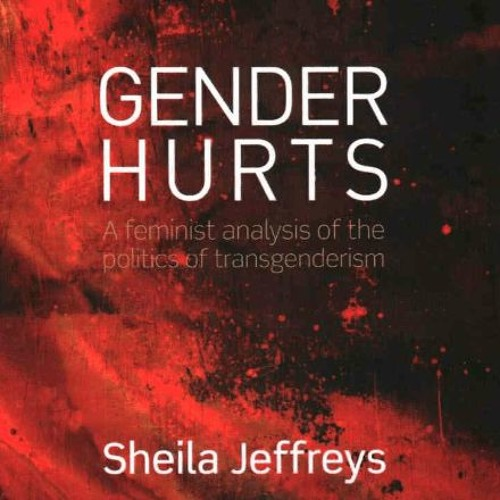 November 3rd 2014 Interview with Sheila Jeffreys, Elizabeth Hungerford and Jane Doe