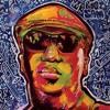 Rock Your Lyrics Backstage - Interview with Big Sam Williams - Big Sam Funky Nation