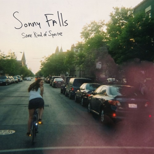 "Sonny Falls ""Flies"""
