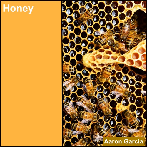 Honey (The Jesus and Mary Chain)