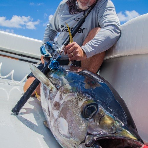 Reels Line And Drag Settings To Use When Kayak Fishing