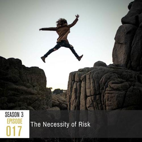 Season 3, Episode 17: The Necessity of Risk