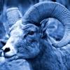 I'm A Ram - Trippy Remix (Al Green COVER)