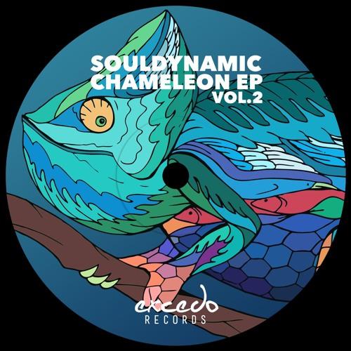 Souldynamic - Akinesia (Chameleon Ep Vol.2) (Excedo Records)