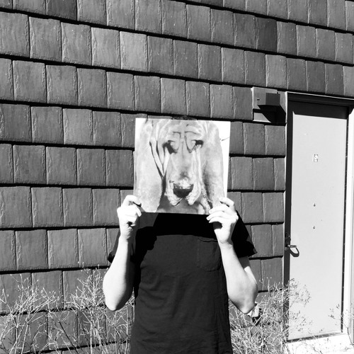 161: The Face of a Dog with Kevin Crowley