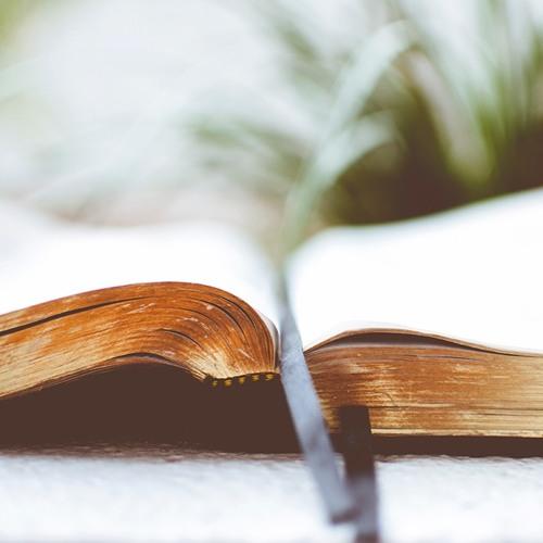 Les 10 commandements du freelance