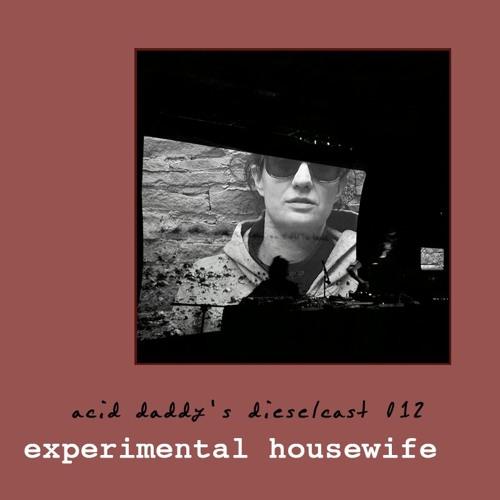 012 - Experimental Housewife (Santa Fe, NM)
