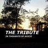 The Tribute feat.JKM(Trying To Show Avicii I Was Cool)