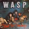 WASP - I Wanna Be Somebody (Cover)