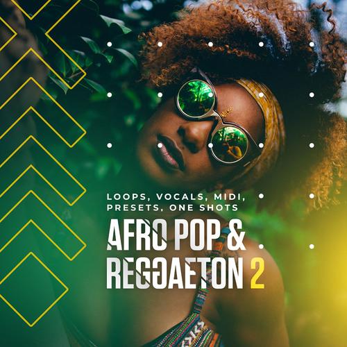 Diginoiz Afro Pop Reggaeton 2 By Synthpresets