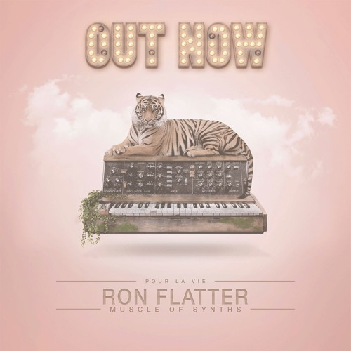 Ron Flatter -Muscle Of Synths - Album Mix