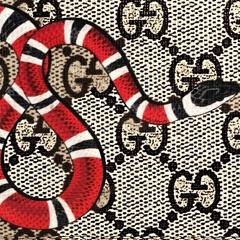 Snakes - FinessoThePlug X 20bag$ (Prod.NevzBeats)