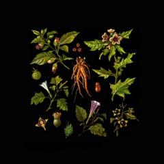 Folklore of Plants Vol.II - Venefic Garden